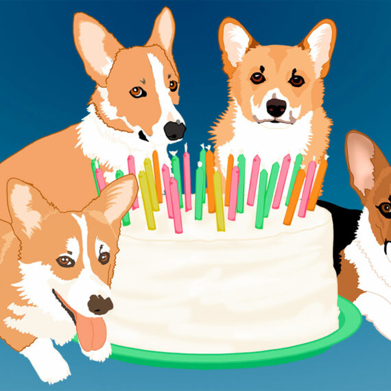 Happy Corgi Birthday (201)