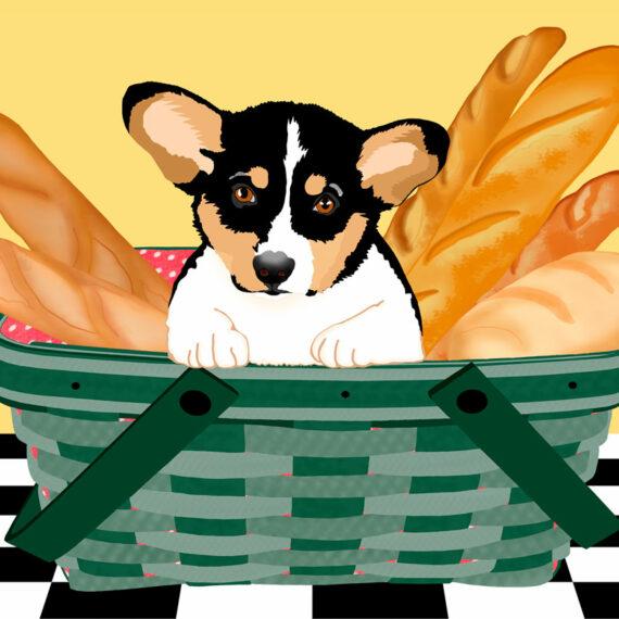 No Bigger Than a Bread Basket (239)