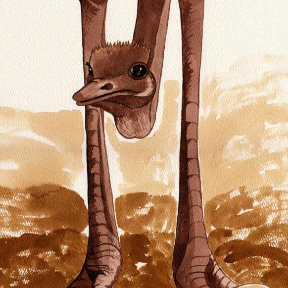 Motherhood - Ostrich (029)